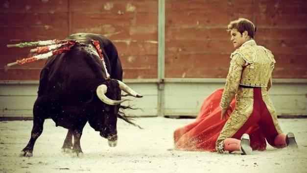 Spanish-Bull-Fighter-And-His-Bull_art.jpg